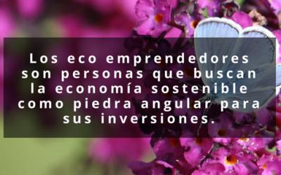 Qué es un eco emprendedor?