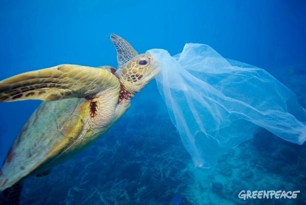 Mejor sin plásticos