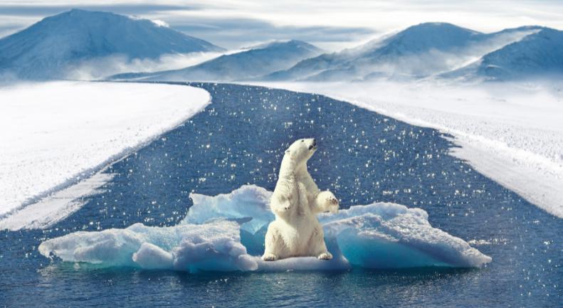 Calentamiento global. Como ranas en agua hirviendo